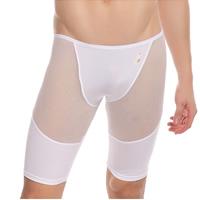 Nylon Men Abdomen Drawing Capri Pants skinny   transparent patchwork Sold By PC