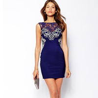 Lace   Polyester Sexy Package Hip Dresses backless hollow   transparent embroider patchwork Sold By PC