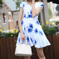 Chiffon One-piece Dress, different size for choice, printed, floral, blue, Sold By PC