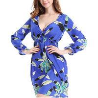 Chiffon Plus Size Autumn and Winter Dress printed different color and pattern for choice
