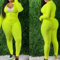 Polyester Frauen Casual Set, Hosen & Nach oben, mehr Farben zur Auswahl,  Festgelegt